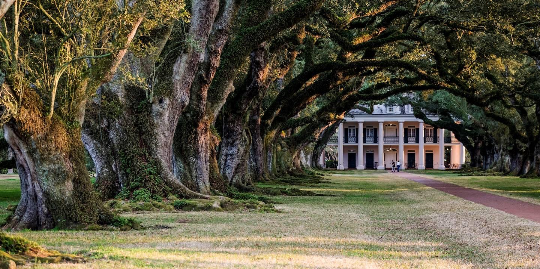 Sur la route des Plantations : la demeure Oak Alley Plantation - Louisiane - Etats Unis