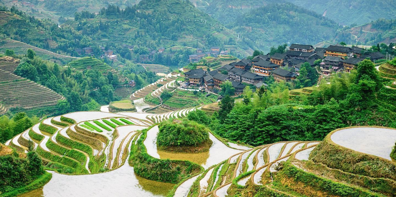 Rizières en terrasses - Chine