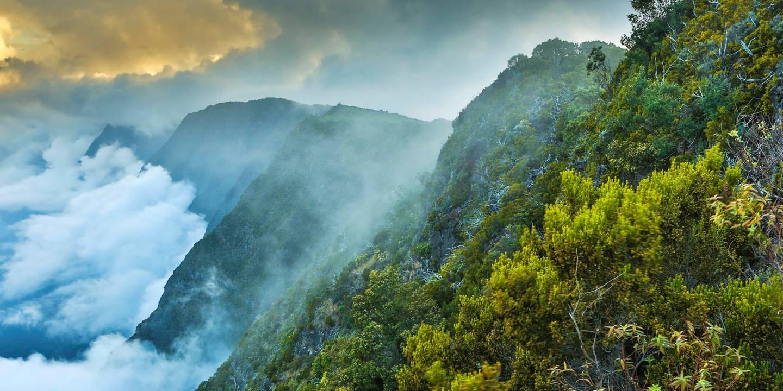 Rivière des Remparts - Saint Joseph - La Réunion