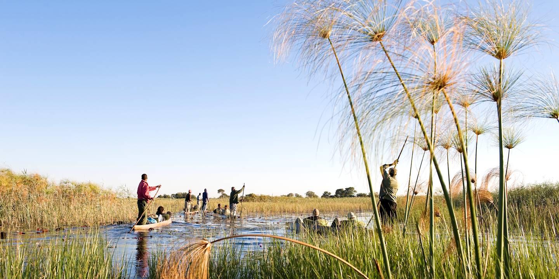 Traversée en Mokoro dans le delta de l'Okavango - Bostwana