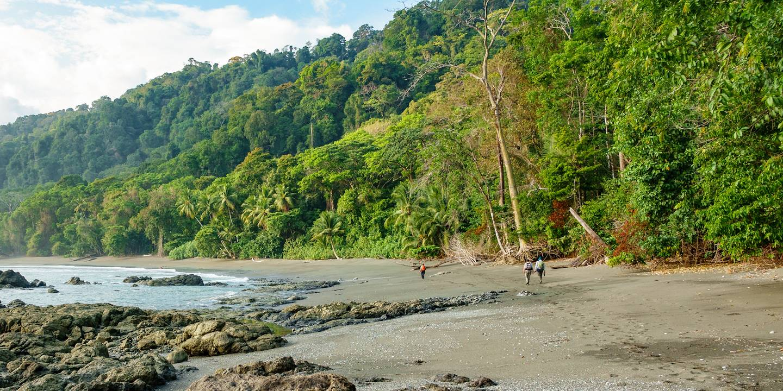 Randonnée dans le parc national de Corcovado - Péninsule d'Osa - Costa Rica