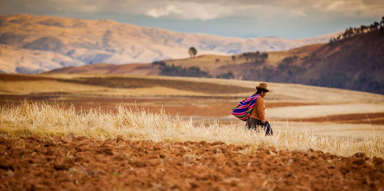 Fermière rentrant chez elle - Vallée Sacrée des Incas - Province de Cuzco - Pérou