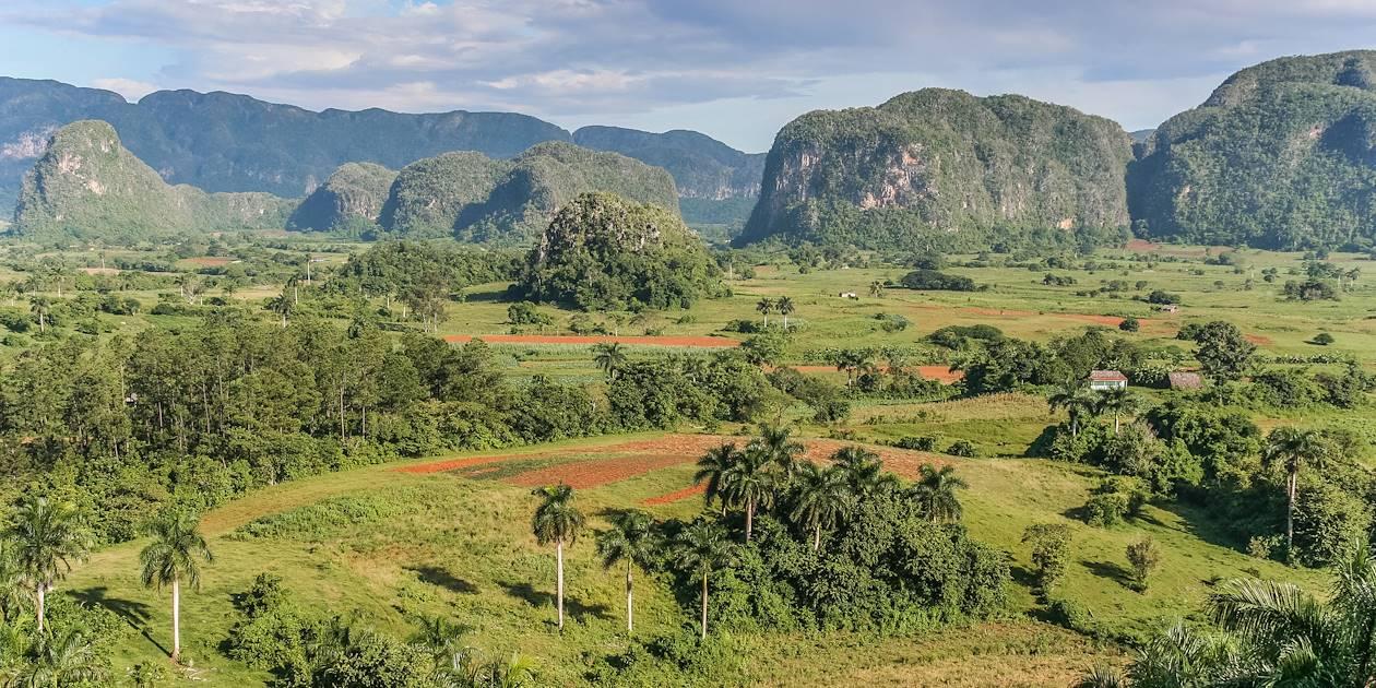 Vallée de Vinales - Pinar del Rio -  Cuba