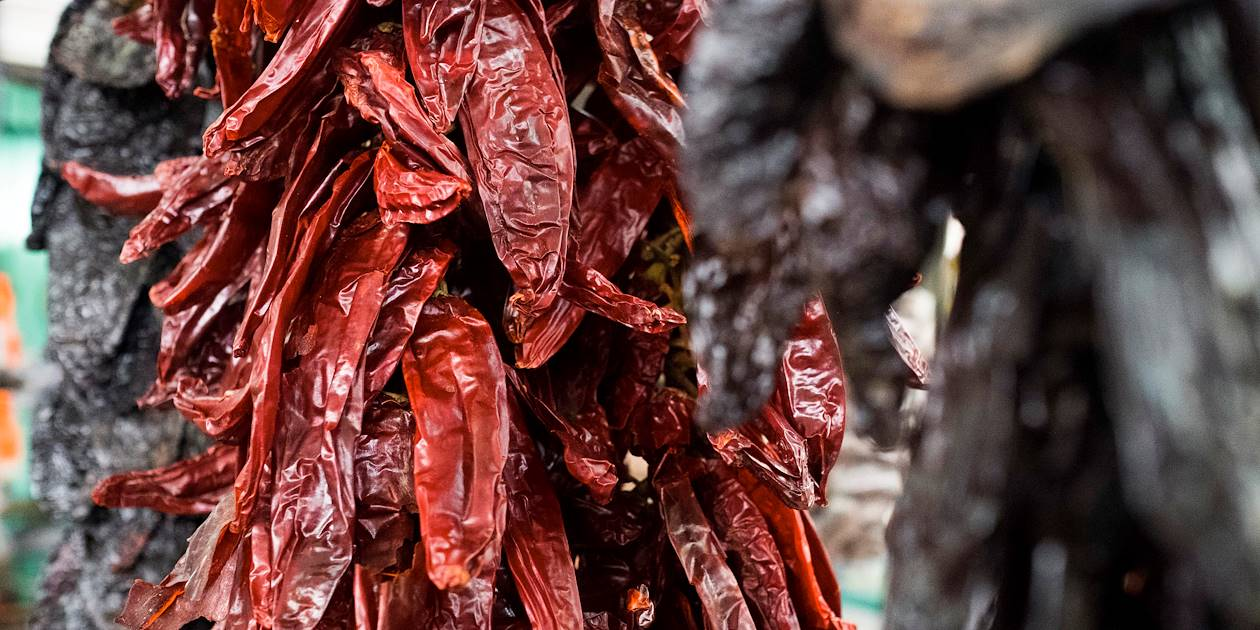 Découverte du marché de Merida et cours de cuisine chez l'habitant - Merida - Yucatan - Mexique