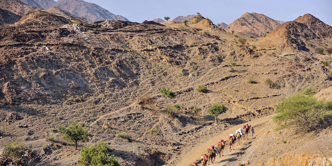 Les caravaniers afars sur la route du sel - Désert du Danakil - Ethiopie