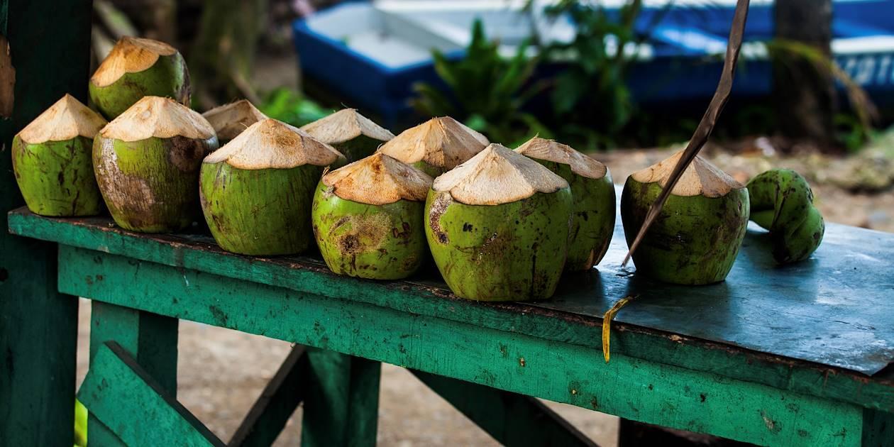 Noix de coco fraîches sur la plage - Costa Rica