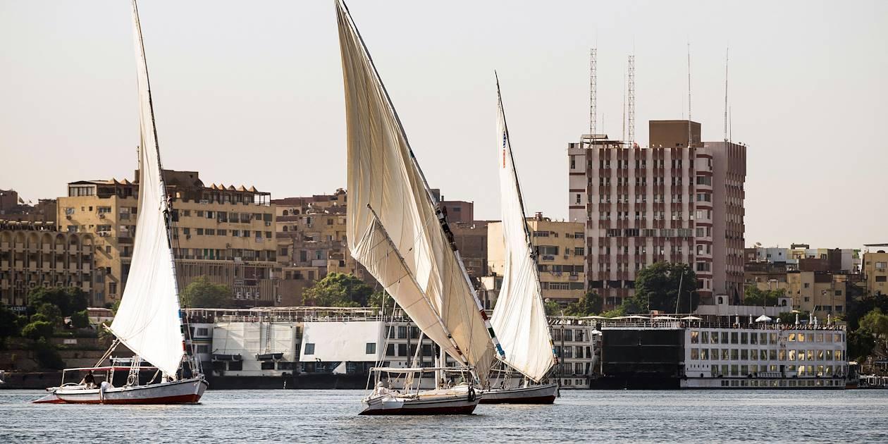 Le long du Nil en felouque - Assouan - Égypte