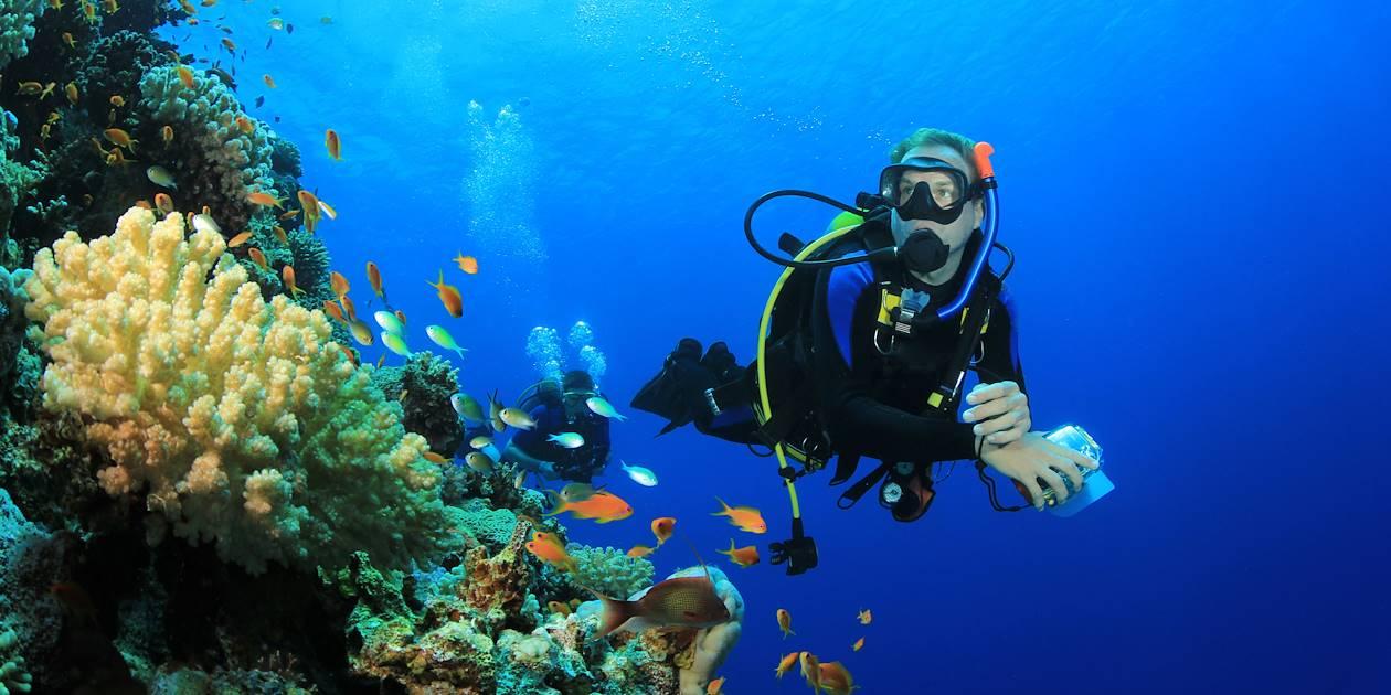 Plongée en mer rouge - Égypte