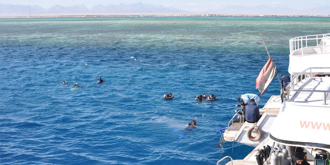 Scéance de plongée en mer rouge - Égypte
