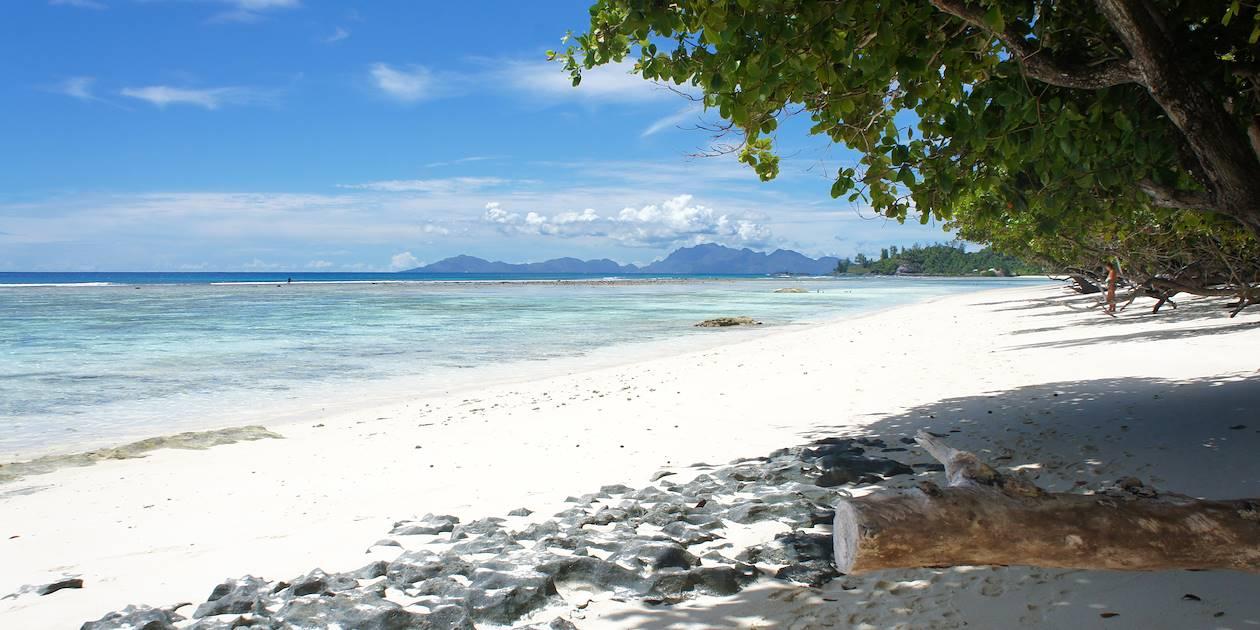 Plage à Silhouette - Seychelles