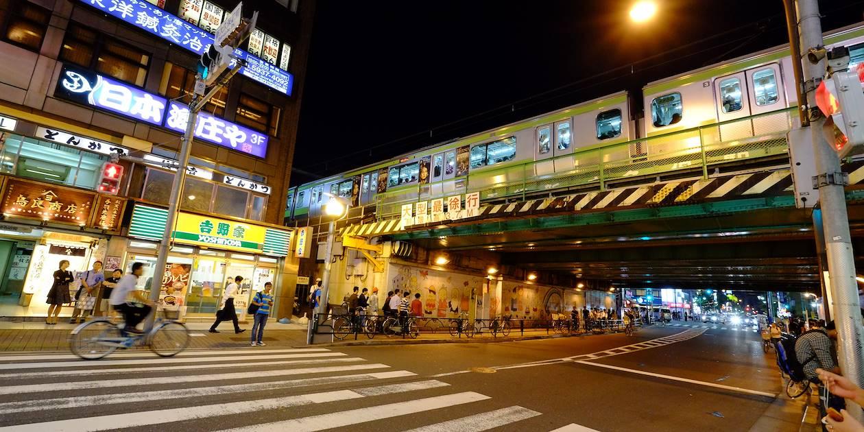 Dans les rues de Tokyo la nuit - Ile Honshu - Japon