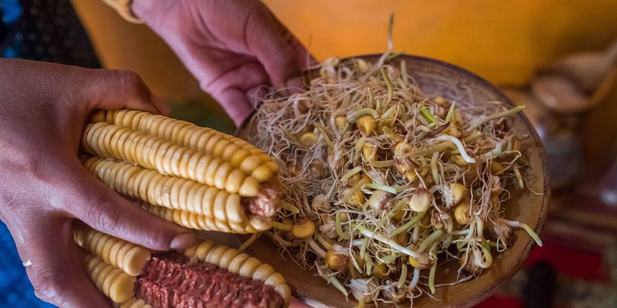 Déjeuner chez Susana et sa famille : préparation de la chicha, bière inca à base de maïs - Cuzco - Pérou