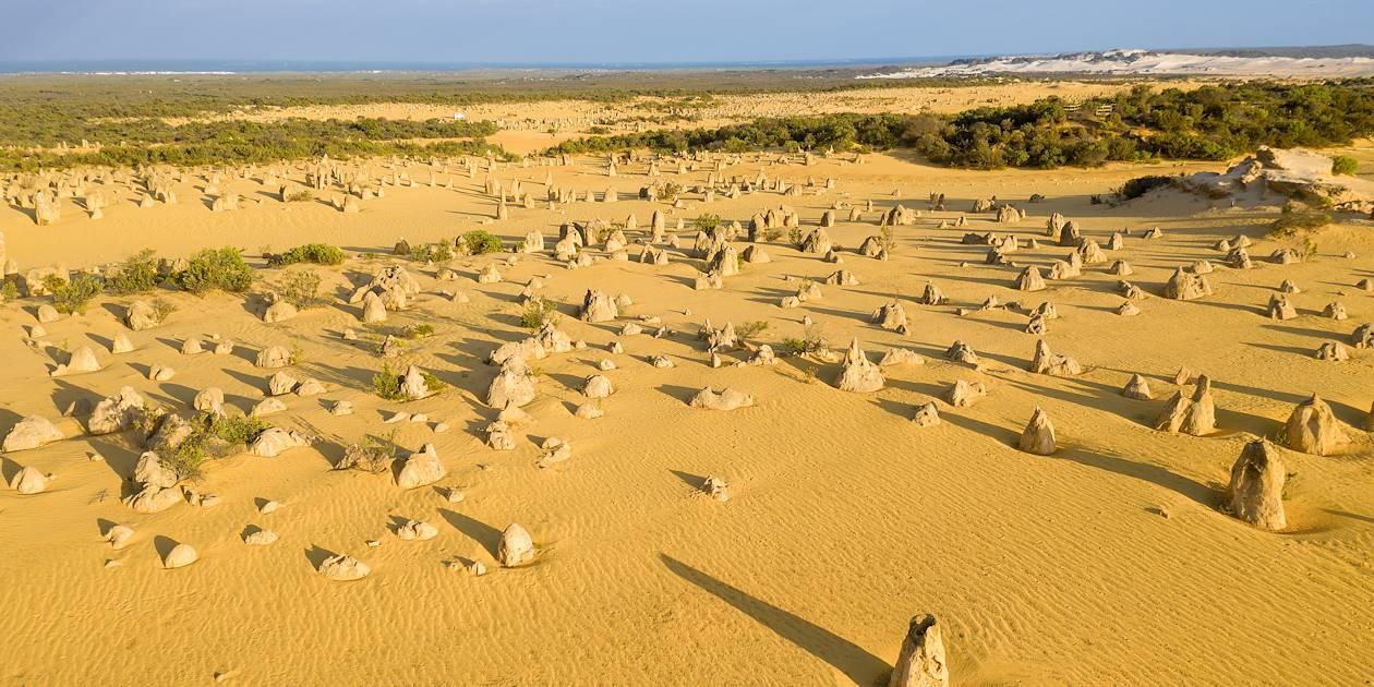 Désert des Pinacles dans le parc national de Nambung - Australie
