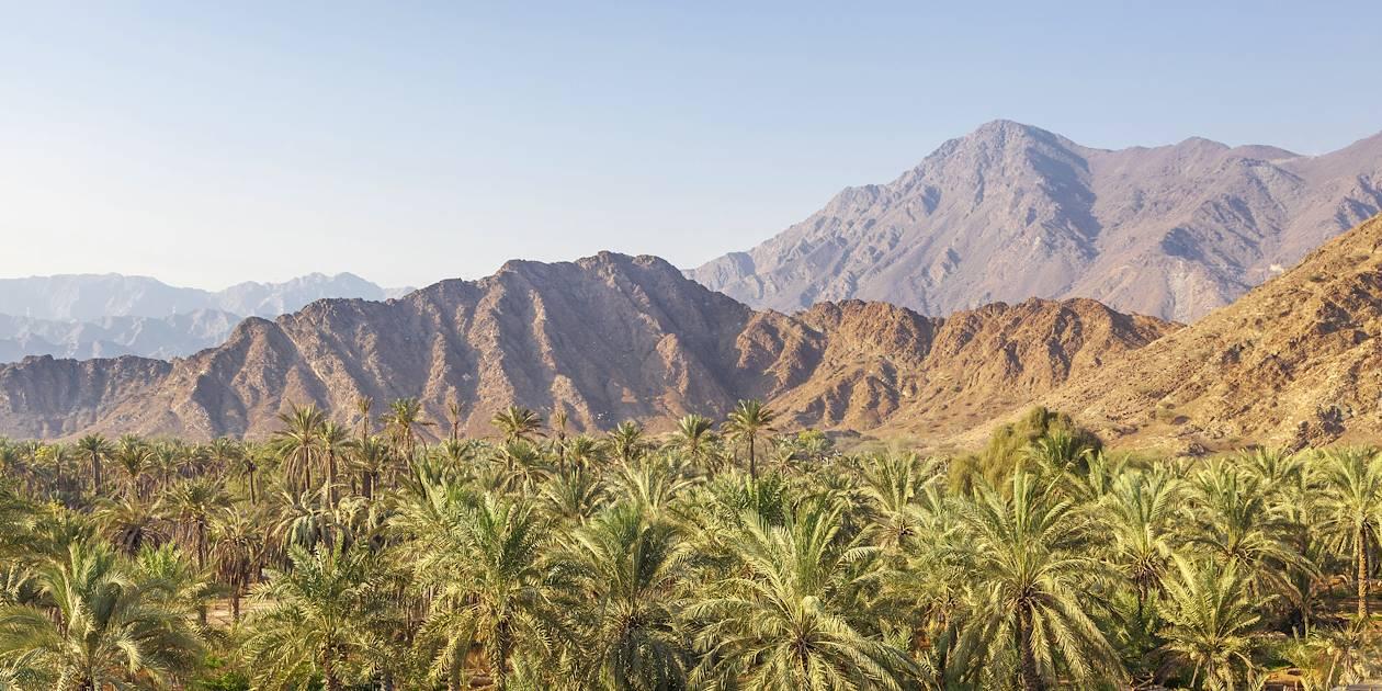 Paysages autour de Al Fujairah - Emirats Arabes Unis