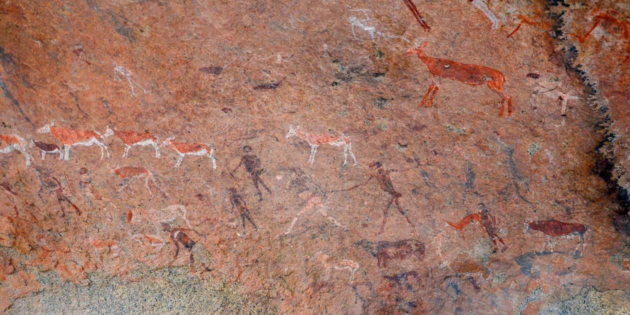 Massif du Brandberg - Namibie