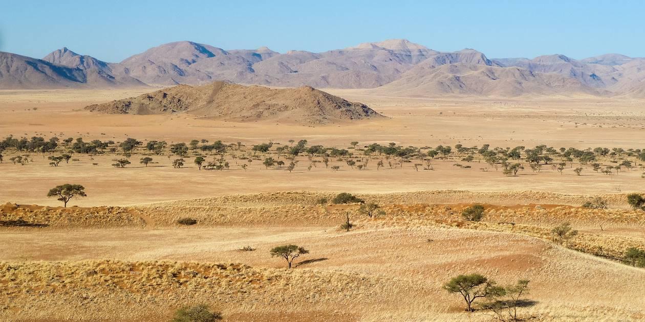 desert de kalahari