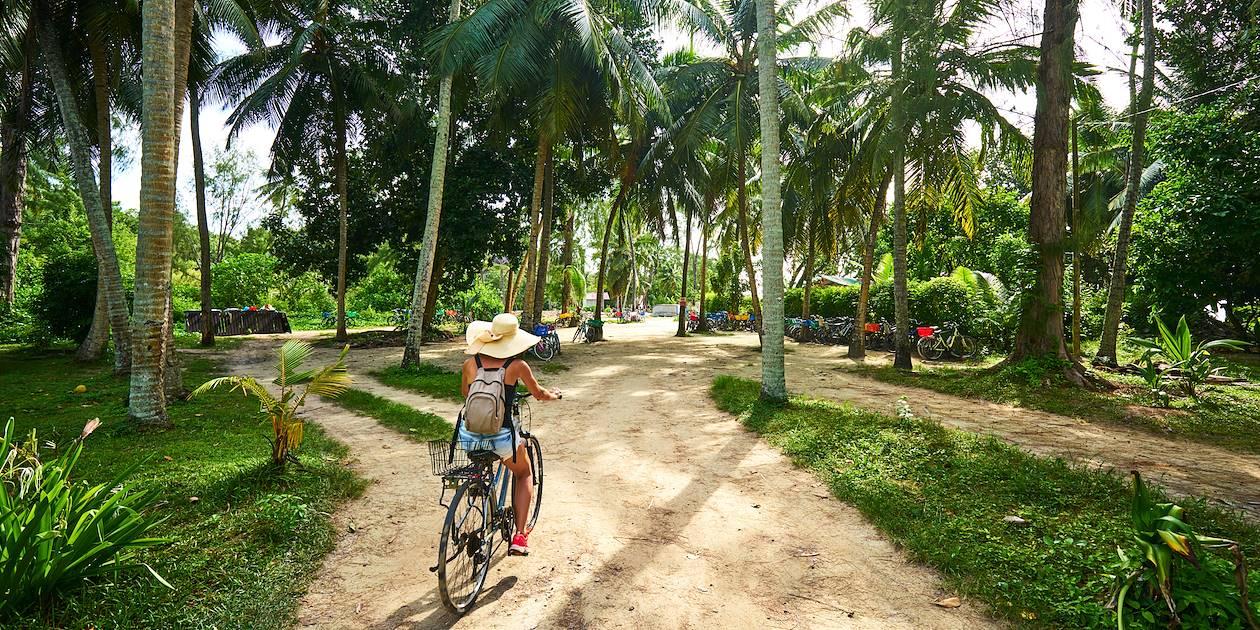 Traversée d'une plantation de vanille à vélo - La Digue - Seychelles
