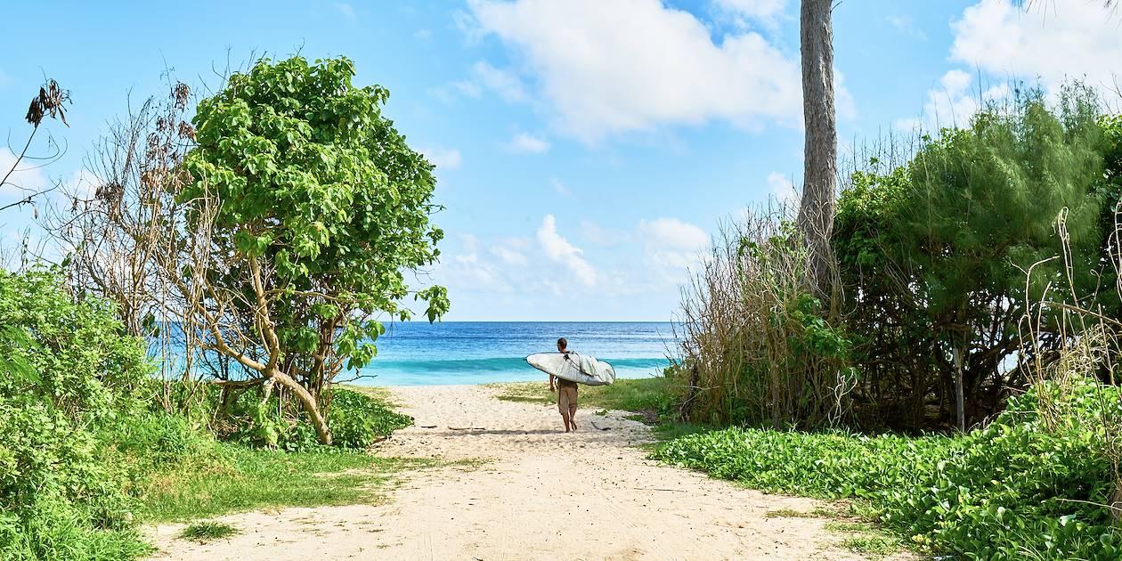 Surfer rejoingant son spot - Mahe - Seychelles