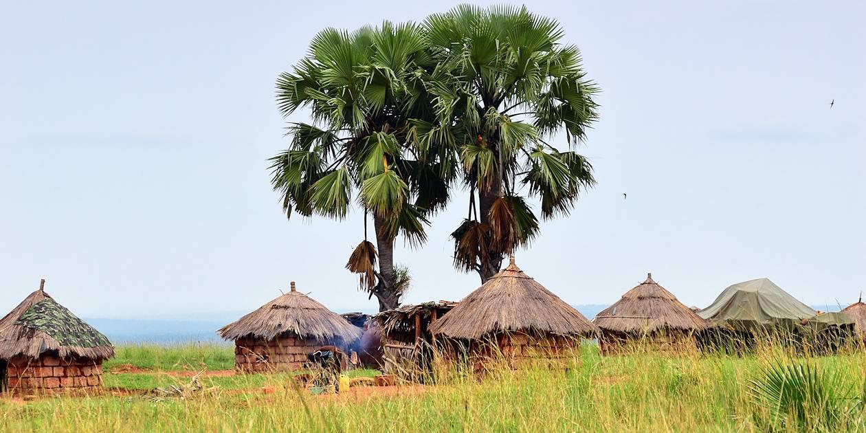Huttes dans un village - Ouganda