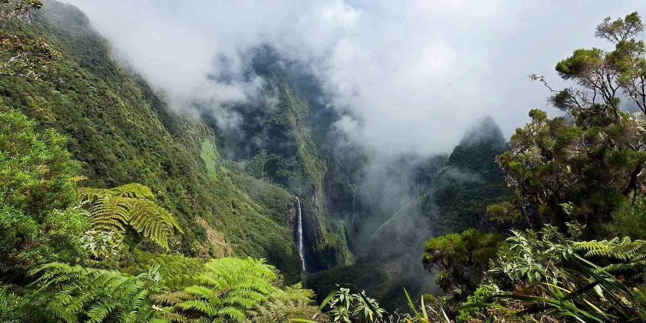 Trou de Fer - Salazie - La Réunion