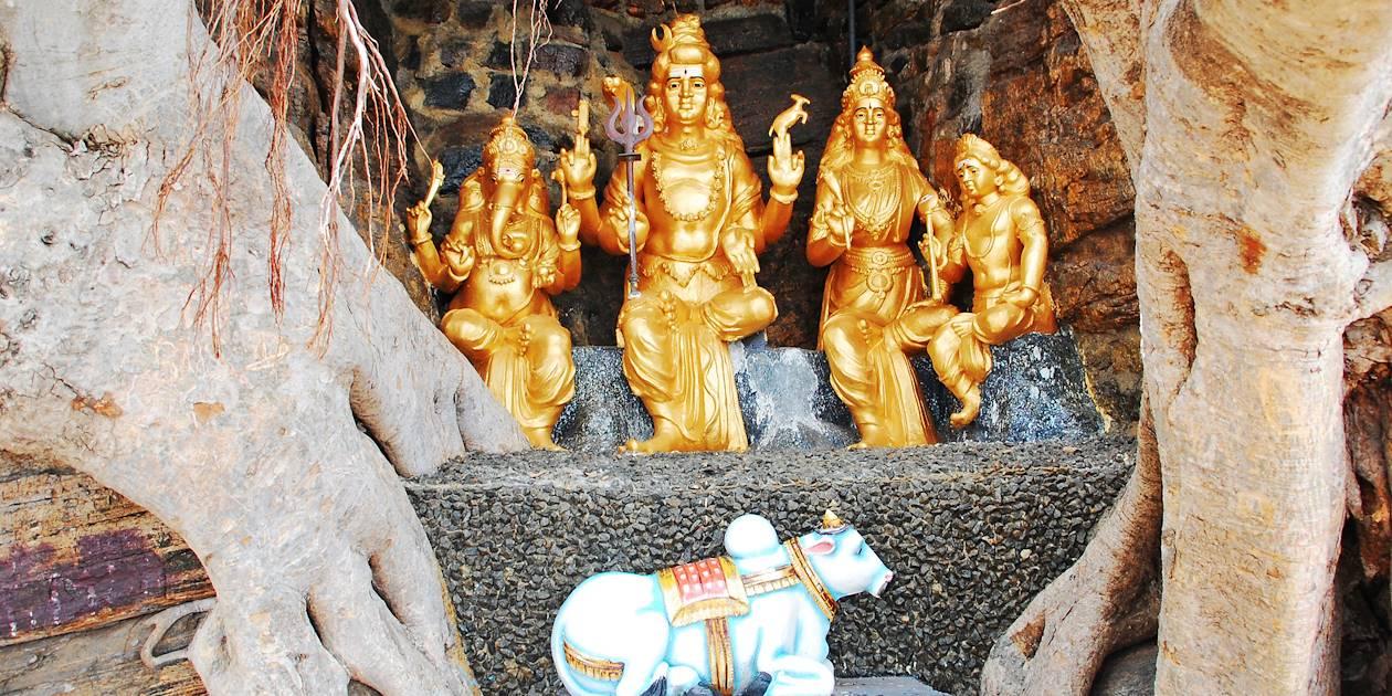 Trincomalee - Province de l'Est - Sri Lanka
