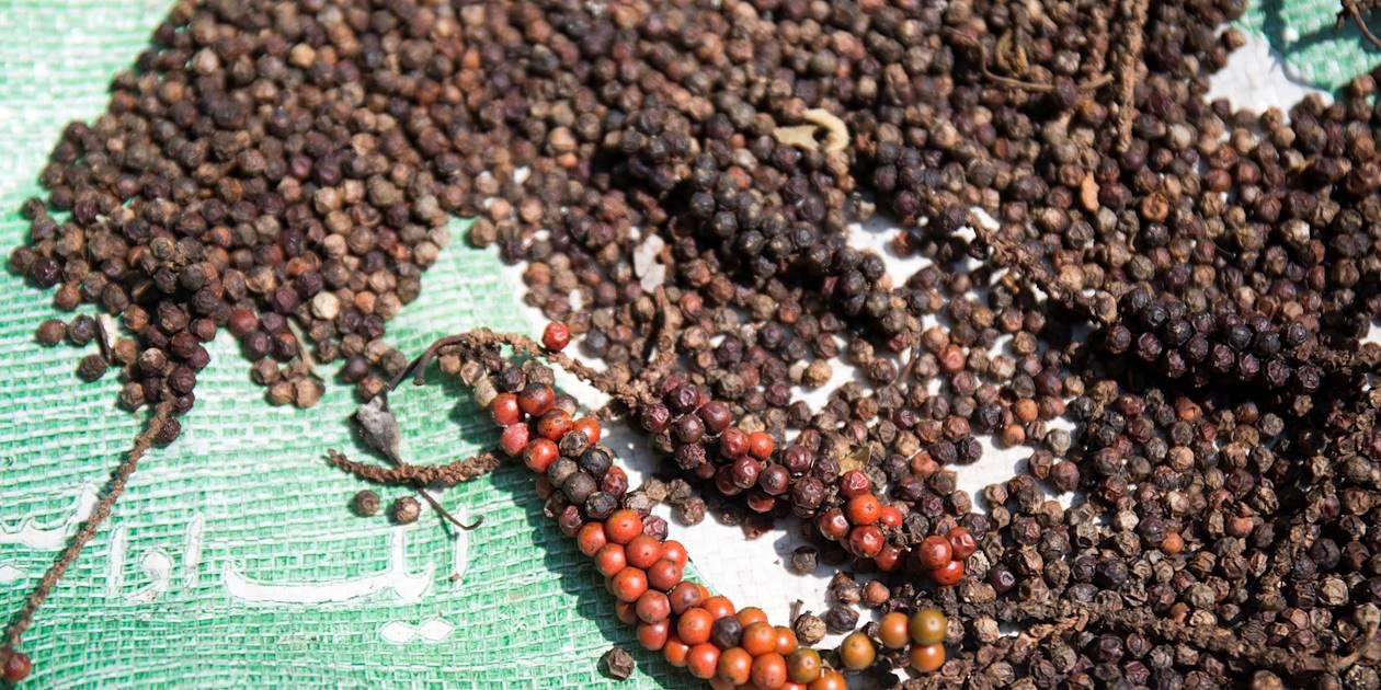 Rencontre des producteurs locaux et leurs épices : ici, le poivre - Kandy - Centre - Sri Lanka