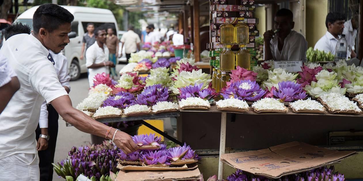 Vente de fleurs, offrandes au Temple de la Dent - Kandy - Centre - Sri Lanka
