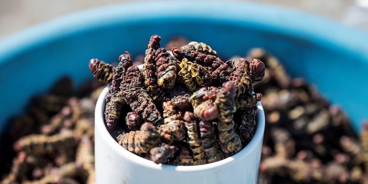 Le quartier de Mondesa : vente d'insectes et vers grillés - Swakopmund - La Cote - Namibie
