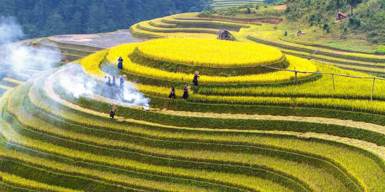 Rizières en terrasses - Mu Cang Chai - Vietnam