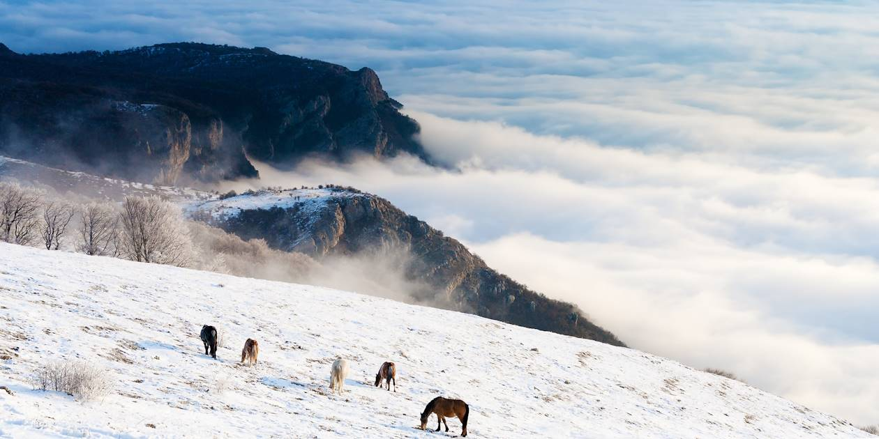 Parc Torres del Paine - Chili