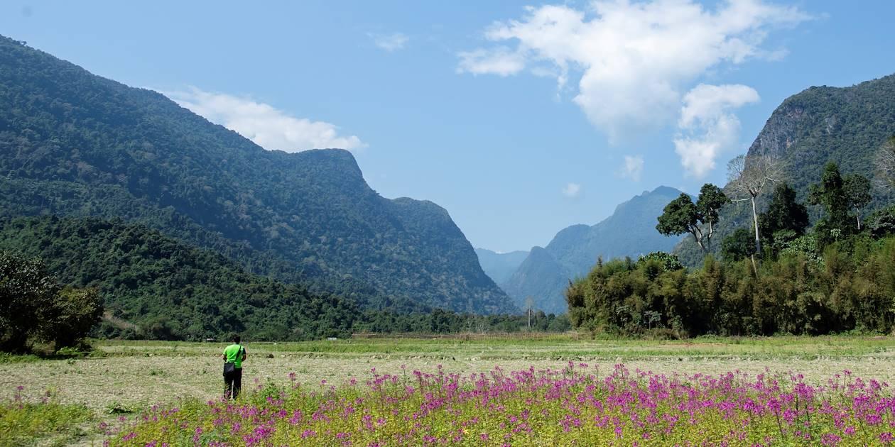 Découverte de la campagne autour de Muong Ngoi - Laos