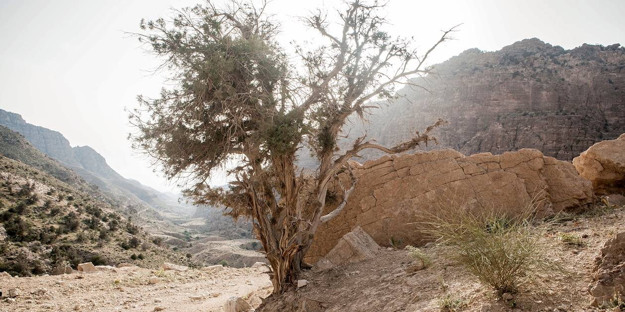 Randonnée sur le Wadi Dana Trail - Dana - Jordanie