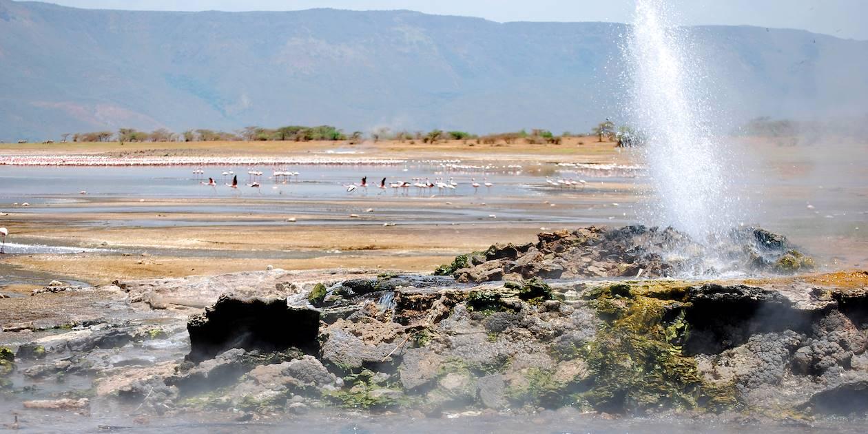 Source chaude et geyser -  Lac Bogoria - Kenya