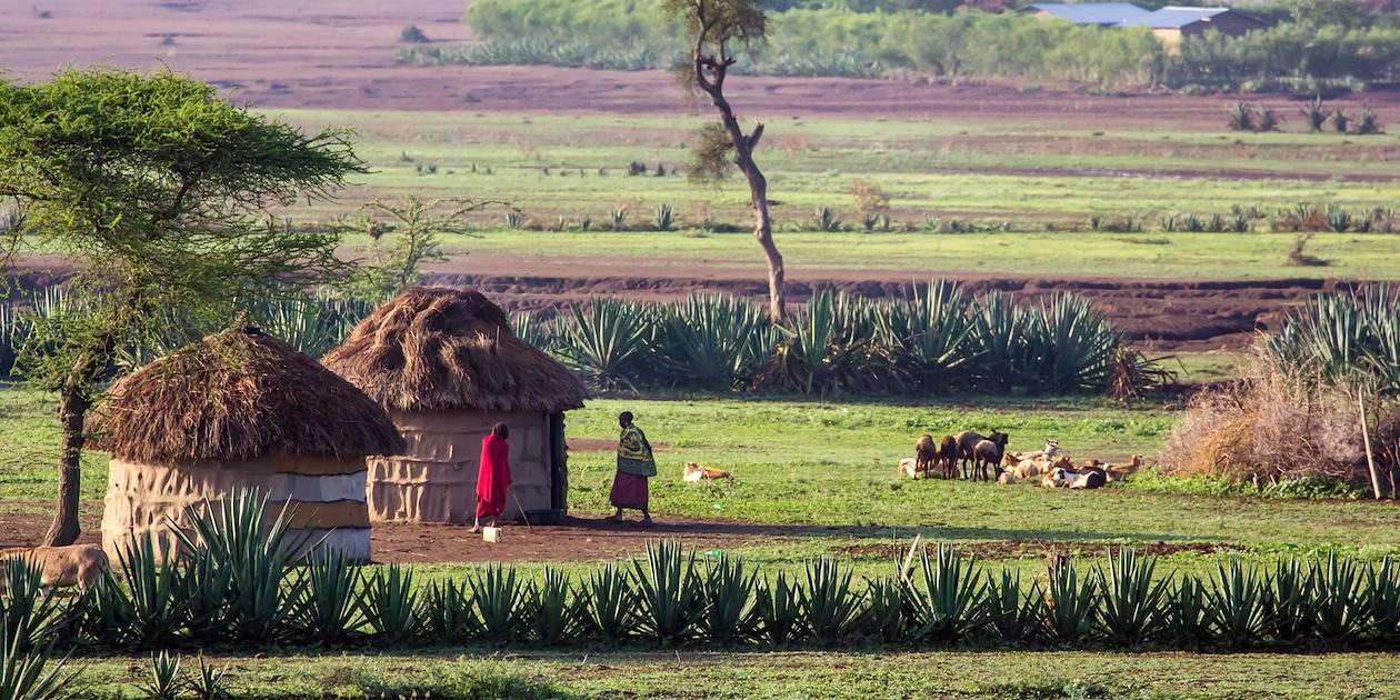 Village massai - Tanzanie