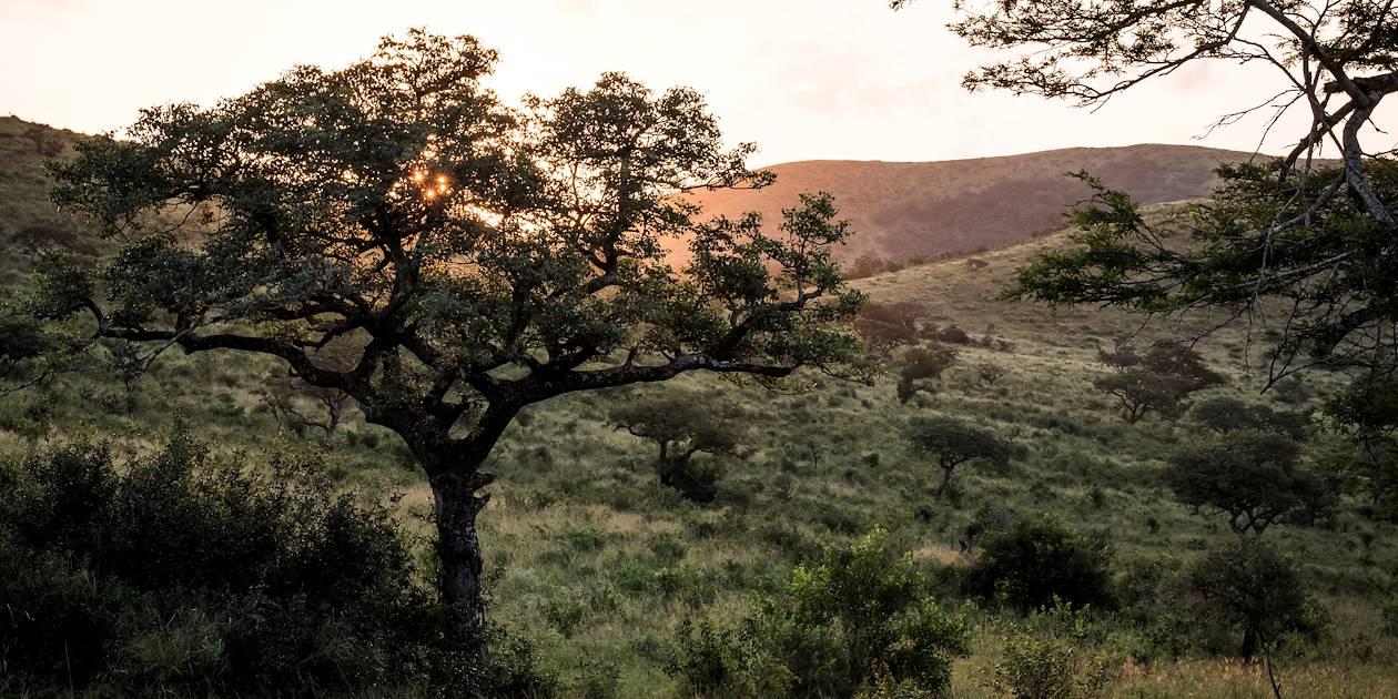 Coucher de soleil sur la réserve de Hluhluwe-Umfolozi - Hluhluwe - KwaZulu-Natal - Afrique du Sud