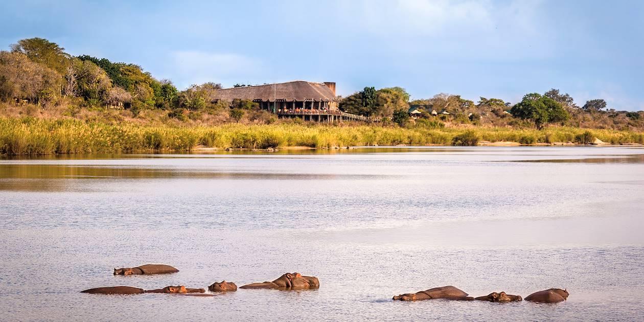Vue sur la faune depuis un rest camp - Parc Kruger - Afrique du Sud