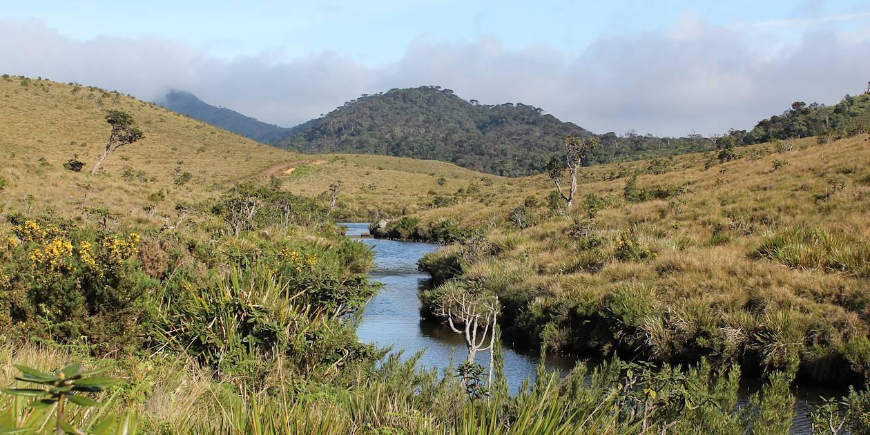 Parc national Horton Plains - Nuwara Eliya - Sri Lanka