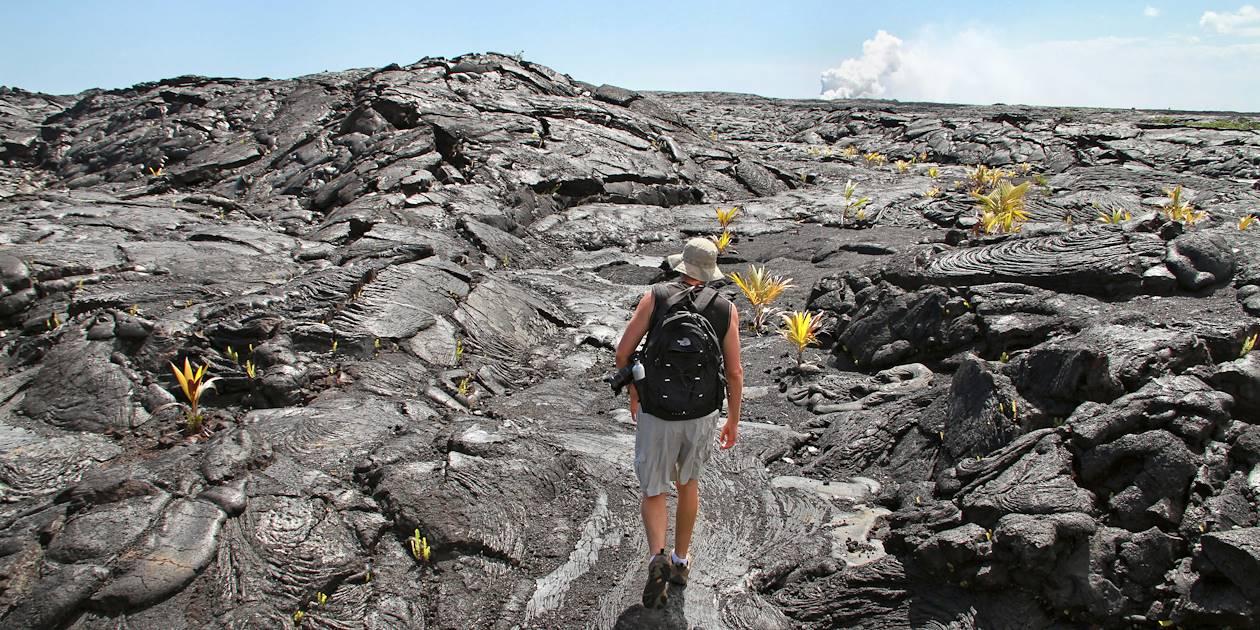 Balade à pied sur la lave - Volcano Village Big Island - Etats-Unis