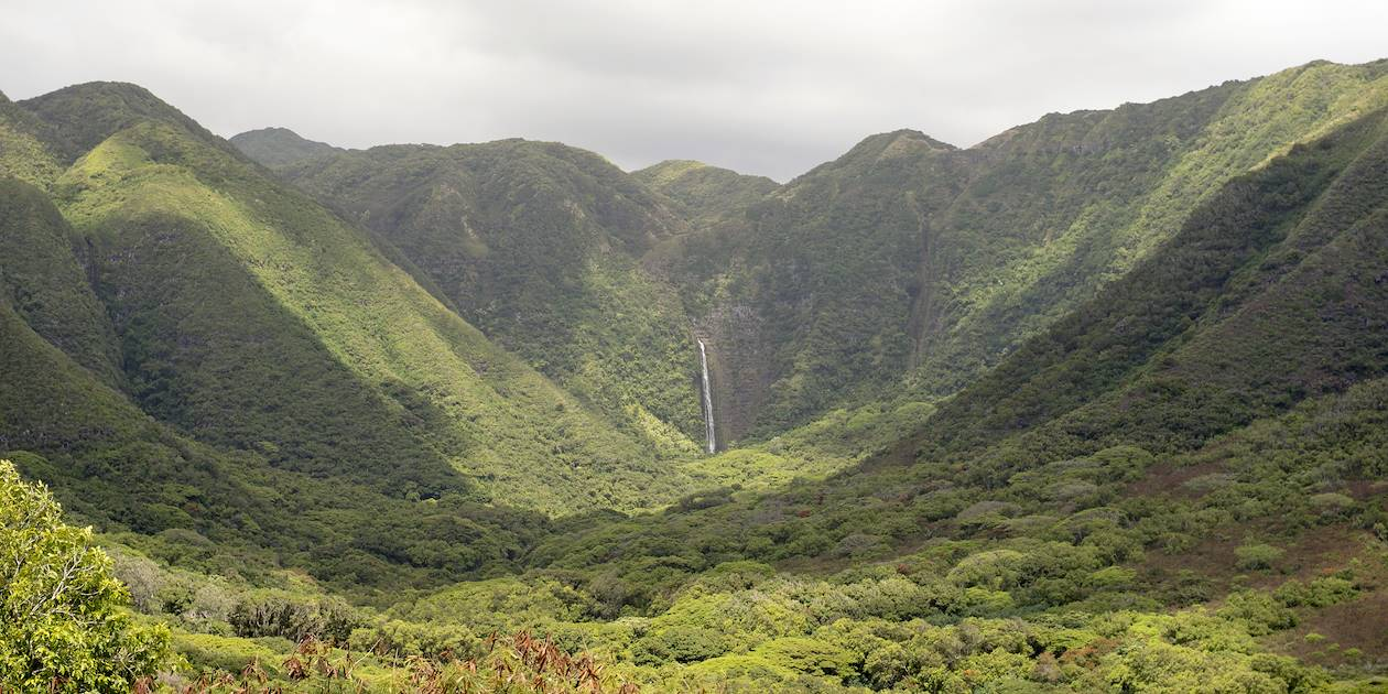 Halawa Valley Falls - Molokai - Hawaï
