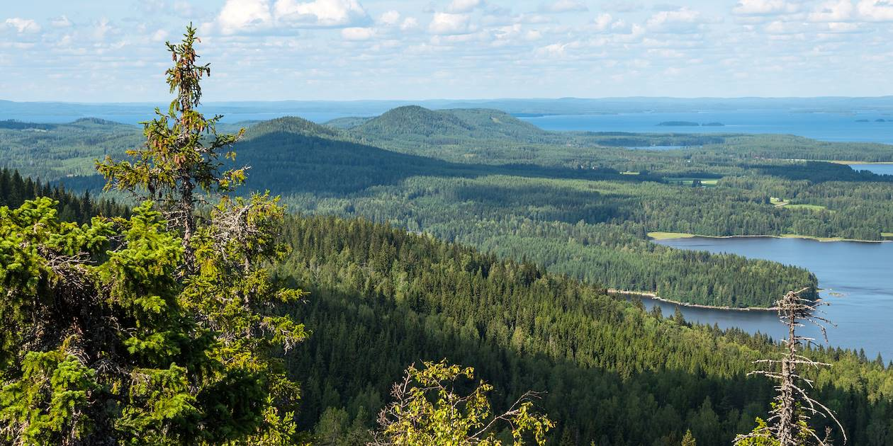 Parc national de koli - Finlande