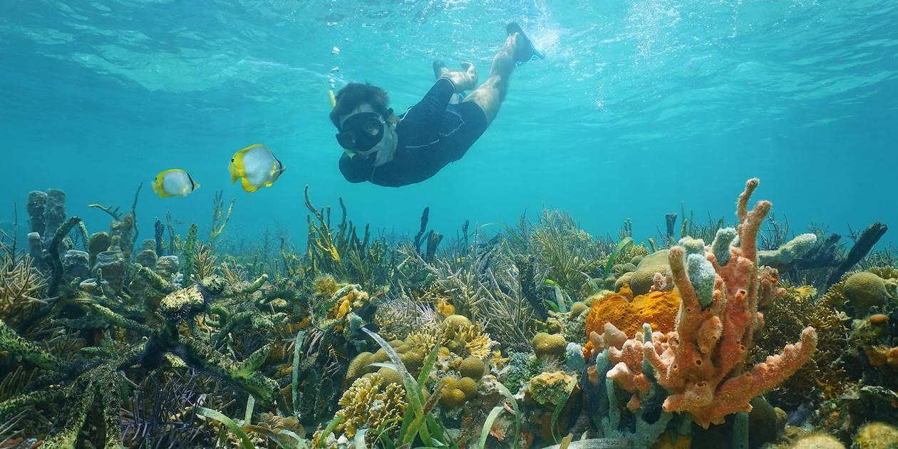 Snorkeling à l'archipel des Perles - Panama