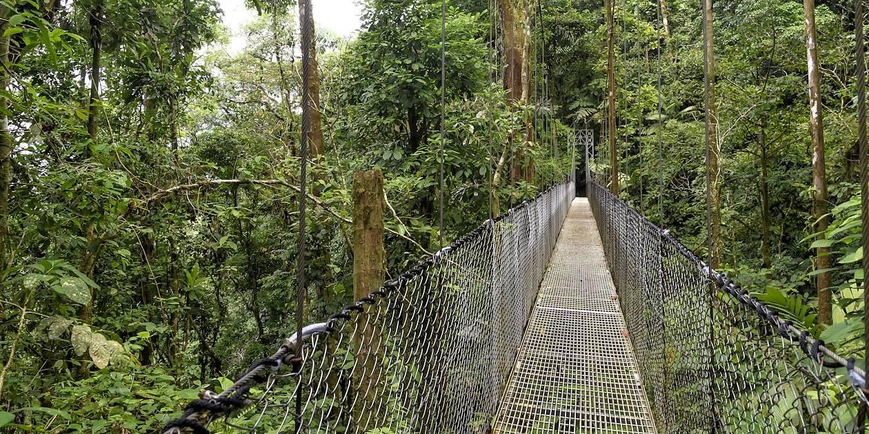 Les ponts suspendus de Boquete - Boquete - Panama