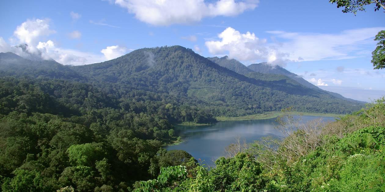 Région de Mundunk - Bali - Indonésie