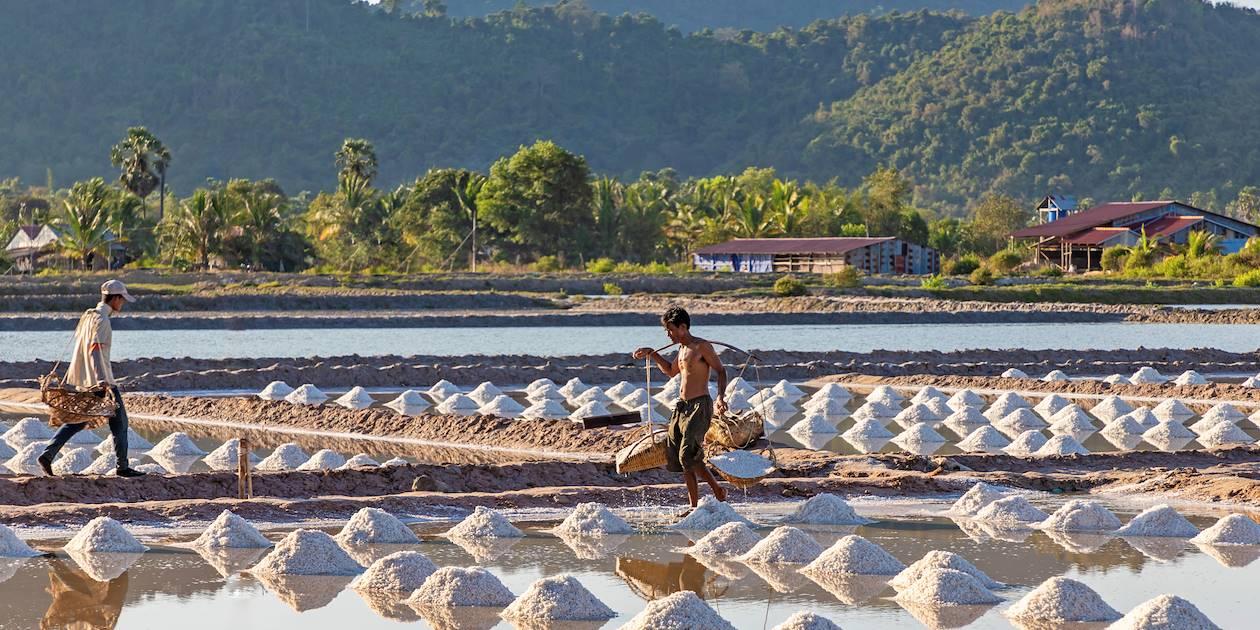 Marais salants d'Angkoul - Cambodge