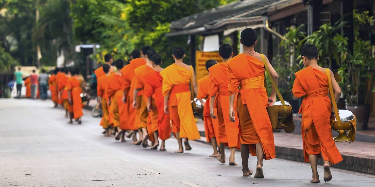 Tak Bat, cérémonie de l'aumône à Luang Prabang - Laos