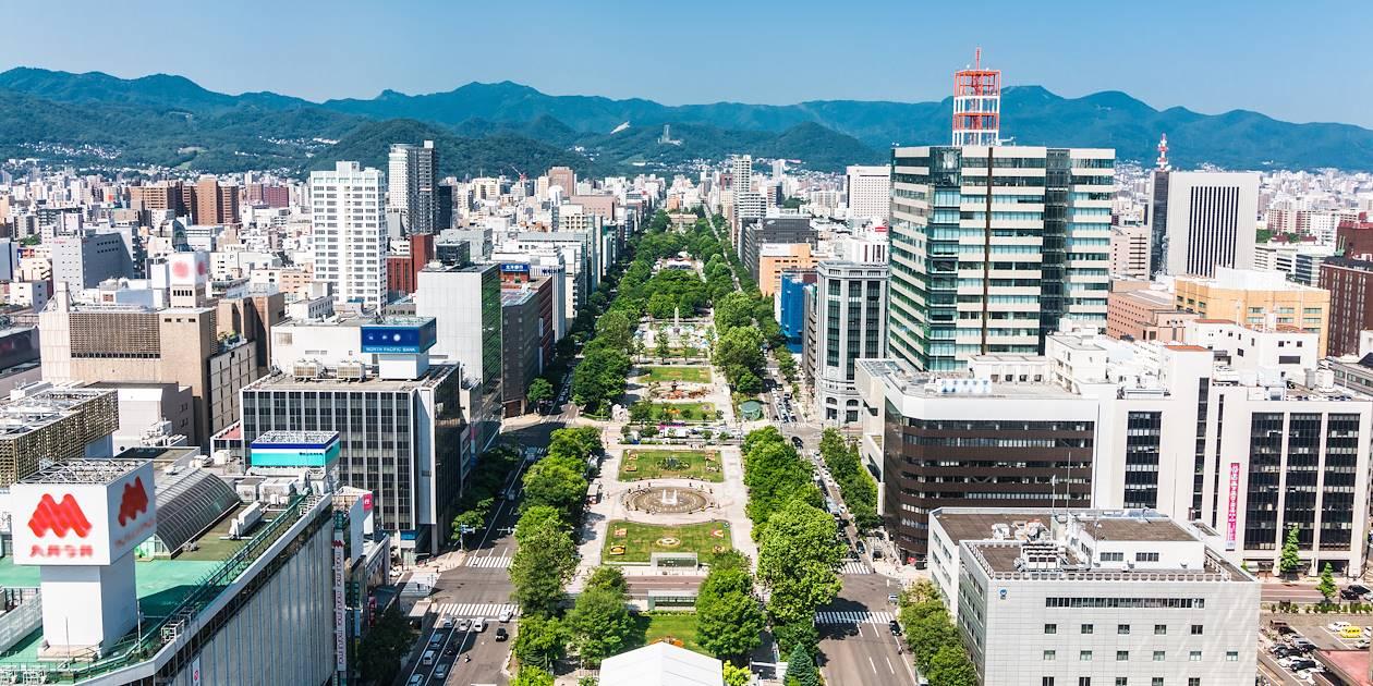 Vue sur Sapporo - Hokkaido - Japon
