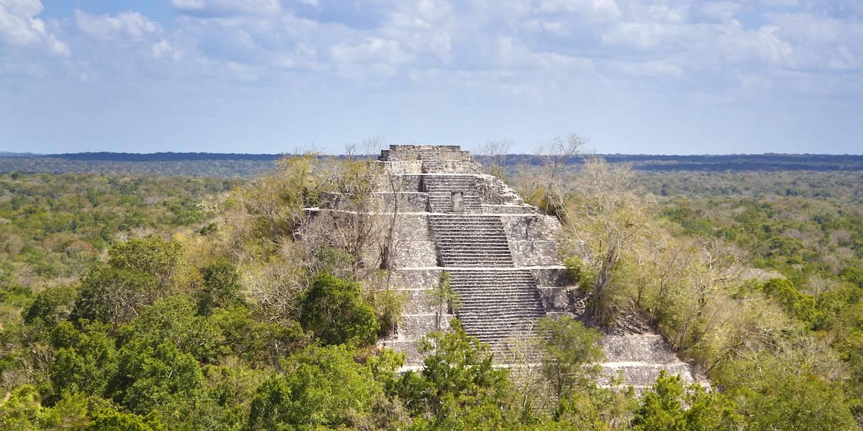 Ruines du Temple I de Calakmul - Mexique