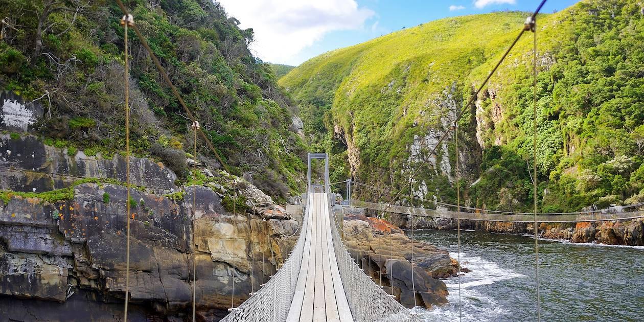 Pont suspendu dans le parc national Tsitsikamma - Afrique du Sud