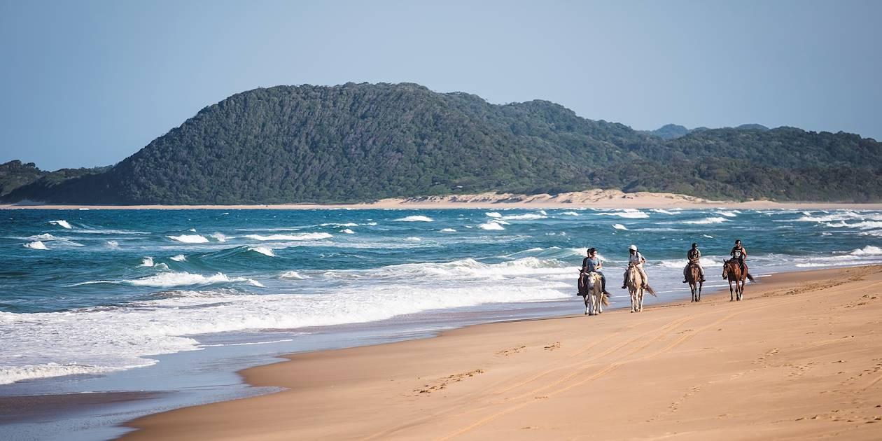 Balade à cheval sur la plage et dans la réserve de Santa Lucia - Santa Lucia - KwaZulu-Natal - Afrique du Sud
