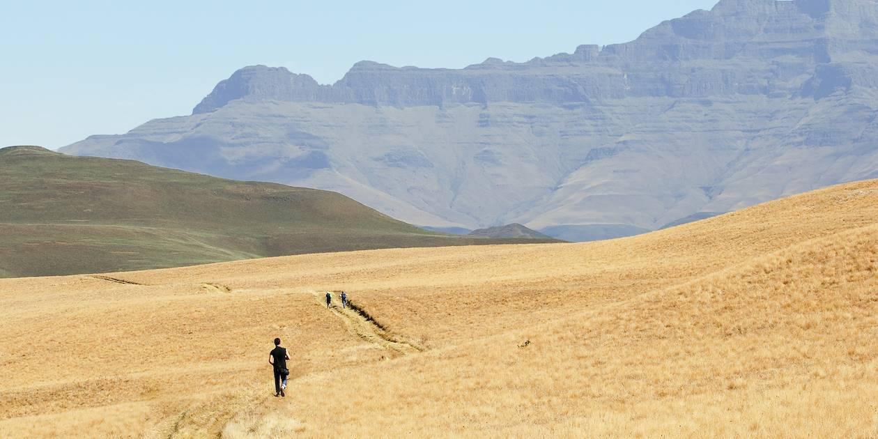 Randonnée dans les grands espaces du Drakensberg - Afrique du Sud